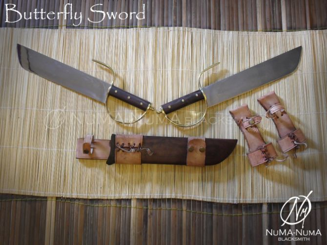 Chinese weapon Butterfly Sword 1 sdc10216